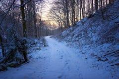Trayectoria del invierno Foto de archivo libre de regalías