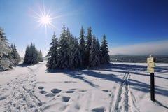 Trayectoria del invierno para el paisaje congelado esquiadores bohemio Foto de archivo