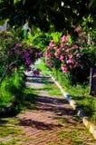 Trayectoria del paseo del jardín Fotos de archivo libres de regalías