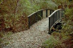 Trayectoria del pie con el puente Fotografía de archivo libre de regalías