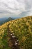 Trayectoria del senderismo del pico de Trem al canto del halcón en la montaña de Suva Planina Imagen de archivo