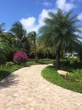 Trayectoria en British Virgin Islands Fotografía de archivo libre de regalías