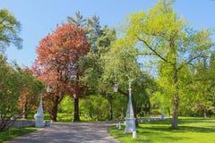 Trayectoria en el parque de la primavera Imagen de archivo