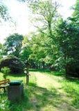 Trayectoria en el parque el día soleado Imagenes de archivo