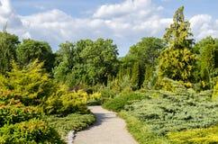 Trayectoria en el parque en verano Imagenes de archivo