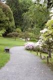Trayectoria en jardín japonés Imágenes de archivo libres de regalías