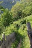 Trayectoria en la primavera en las montañas de Rumania Foto de archivo libre de regalías