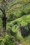Trayectoria en la primavera en las montañas de Rumania Imagen de archivo libre de regalías
