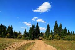 Trayectoria en una madera del abeto en un fondo del cielo azul con clo Fotos de archivo