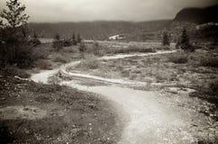 Trayectoria estrecha del Mt St Helens Imagen de archivo libre de regalías