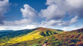Trayectoria hermosa del top de la montaña del prado del otoño almacen de metraje de vídeo