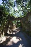 Trayectoria iluminada por el sol en Quinta da Regaleira foto de archivo