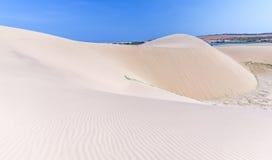Trayectoria a la montaña de la arena en la arena del desierto Imagen de archivo libre de regalías