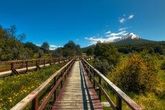Trayectoria a la Patagonia imagen de archivo libre de regalías