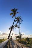 Trayectoria a la playa de Gold Coast Imagen de archivo