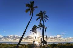 Trayectoria a la playa de Gold Coast Foto de archivo