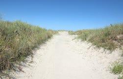 Trayectoria a la playa de Mar del Norte en sol del oro Imagenes de archivo