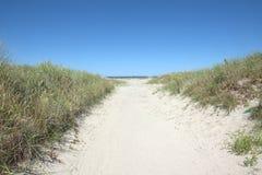 Trayectoria a la playa de Mar del Norte en sol del oro Foto de archivo libre de regalías