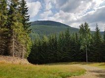 Trayectoria a las montañas en el sol del verano imagenes de archivo