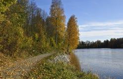Trayectoria a lo largo de una orilla del río con la porción de hojas amarillas Imagen de archivo libre de regalías