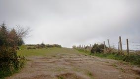 Trayectoria a lo largo del meadwo cercado y autobuses en la colina de Montpelier, Dublín imagen de archivo
