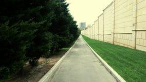 Trayectoria, paredes y árboles junto Foto de archivo libre de regalías