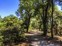 Trayectoria que camina Daniel Island Commemorative Park Foto de archivo