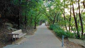 Trayectoria que camina en Lucy Park fotografía de archivo libre de regalías