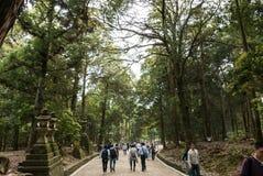 Trayectoria que camina en Nara Park Imagenes de archivo