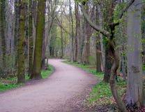 Trayectoria que camina en parque alemán fotos de archivo