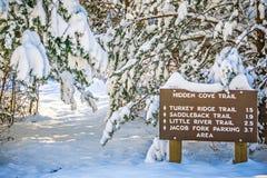 Trayectoria que camina nevada en el bosque Fotografía de archivo