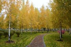 Trayectoria roja en el parque del otoño Imagen de archivo