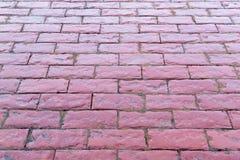 Trayectoria rosada roja mojada de las piedras de los adoquines Imágenes de archivo libres de regalías
