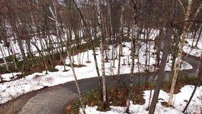 Trayectoria a través de la colina nevosa Fotografía de archivo