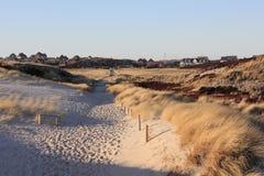 Trayectoria a través de las dunas en la luz de la tarde Imagenes de archivo