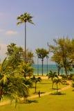 Trayectoria a través de las palmas de coco que llevan para varar Isla Bintan Fotografía de archivo
