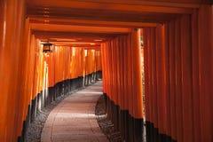 Trayectoria a través de las puertas de Torii Imagen de archivo libre de regalías