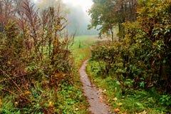 Trayectoria a través del valle en la niebla Fotografía de archivo