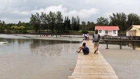 Trayectoria turística Asia del paseo marítimo del puente del hombre de Tattoed del caucásico que camina imagen de archivo libre de regalías