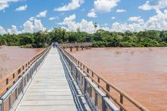 Trayectoria turística en el parque nacional de Iguazu imagen de archivo libre de regalías