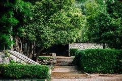 Trayectoria verde del parque Foto de archivo