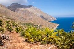 Trayectoria y pequeñas palmeras con las montañas estériles y el mar azul fotografía de archivo