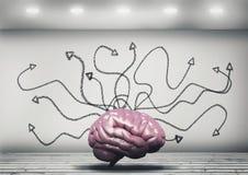 Trayectorias del cerebro humano foto de archivo