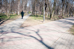 Trayectorias del parque de Kiseleff imagenes de archivo