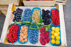 Trays of berries Royalty Free Stock Photography