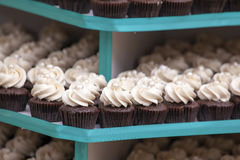 Trays of Cupcakes Closeup Stock Images