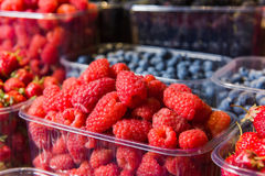 Trays of fresh berries on display at local market. Fresh berries on display. Organic and fresh. Food background. Display on local farmers market Royalty Free Stock Photos