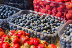 Trays of fresh berries on display at local market. Fresh berries on display. Organic and fresh. Food background. Display on local farmers market. Blueberries Royalty Free Stock Image