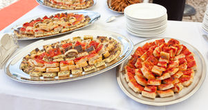 Trays with pieces of tomato pizza, omelets and rustic Royalty Free Stock Photo