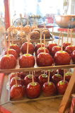 Trays and trays of candy apples Stock Image